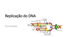 2015 replicação dna vrma - AULAS VERA REGINA ANDRADE