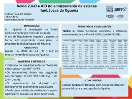 2,4-D e AIB Rodrigo Teles dos Santos PIBIC/CNPQ Mauro