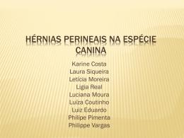 Hérnias perineais na espécie canina