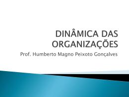 DINÂMICA DAS ORGANIZAÇÕES 05 04 2011