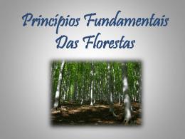 Principios das Florestas e da Biodiversidade – Susana e Ângelo