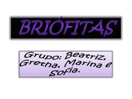 Atelie_briofitas