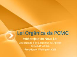 Lei Orgânica da PCMG