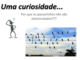 Uma curiosidade
