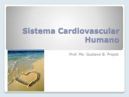 Sistema Circulatório Humanos