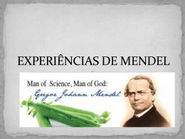 Aula 4 - EXPERIÊNCIAS DE MENDEL (713894)