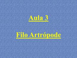 Aula 3 Filo Artrópode Artrópodes – Introdução