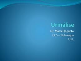Urinálise