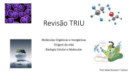 Revisão – Moléculas Orgânicas e Inorgânicas