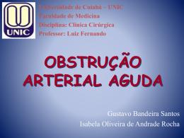 Obstrução Arterial Aguda – Seminário