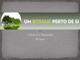bosquepertodesi_alunos_escarvalhos.docx