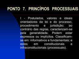 ponto 7. princípios processuais