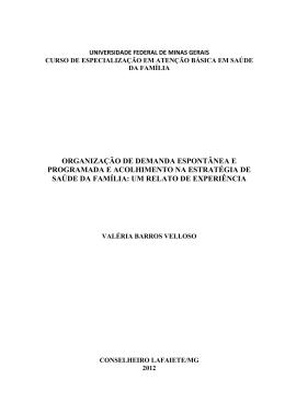Documento na íntegra - Nescon - Universidade Federal de Minas