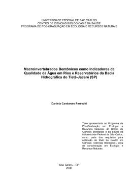 tese impressao pdf