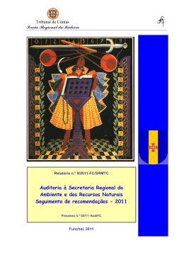 Relatório de Auditoria nº 9/2011 - FS/SRMTC