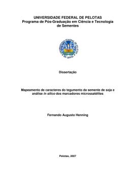 Dissertação de Fernando Augusto Henning