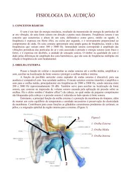 FISIOLOGIA DA AUDIÇÃO - Fundação Otorrinolaringologia