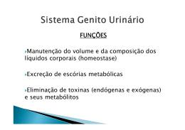 doenças do sistema genito urinario