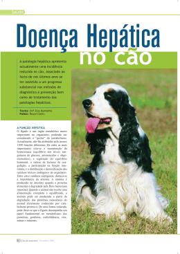 Doença Hepática no cão