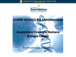 CURSO TÉCNICO EM ENFERMAGEM Anatomia e Fisiologia