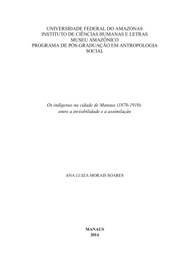 Ana Luiza M Soares - TEDE