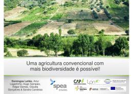 Uma agricultura convencional com mais biodiversidade é