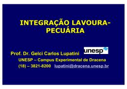PDF INTEGRAÇÃO LAVOURA- PECUÁRIA