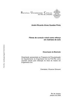 André Ricardo Alves Guedes Pinto Fibras de curauá e