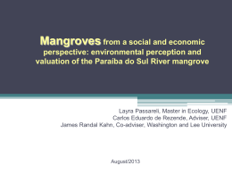 environmental perception and valuation of the Paraíba do Sul