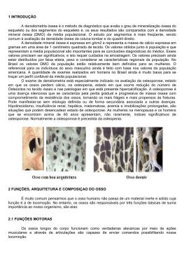 1 INTRODUÇÃO A densitometria óssea é o método de diagnóstico