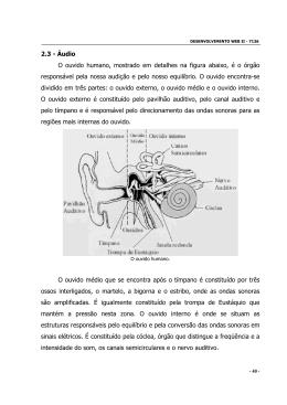 2.3 - Áudio O ouvido humano, mostrado em detalhes na figura