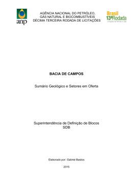 BACIA DE CAMPOS Sumário Geológico e Setores