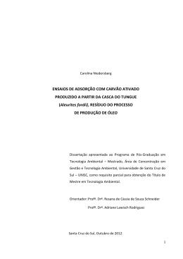 Dissertação Carolina Niedesberg