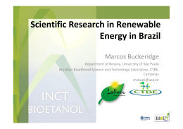 Scientific Research in Renewable Energy in Brazil