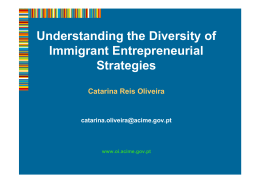 Understanding the Diversity of Immigrant Entrepreneurial Strategies