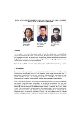 PDF (in Portuguese)