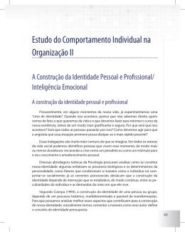 Estudo do Comportamento Individual na Organização II