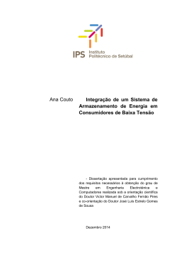 Dissertação Ana Couto_100281003_Versão Final