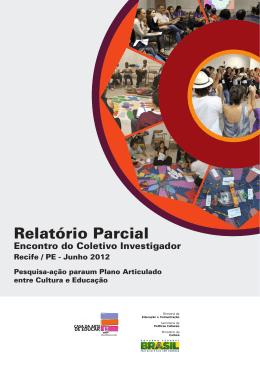 Relatório Parcial Pesquisa-Ação – Região Nordeste (Recife)