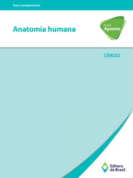 Anatomia humana - Editora do Brasil