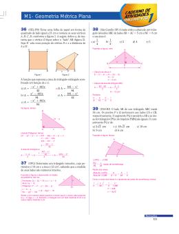 M1 - Geometria Métrica Plana