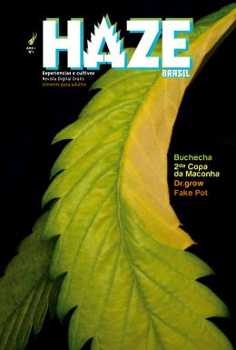 Haze #1 - revista Haze