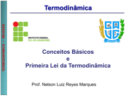 Termodinâmica - Prof. Nelson Luiz Reyes Marques