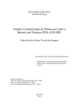 dissertacao - CAMPOS, P. H. O. V. - Biblioteca Digital de Teses e