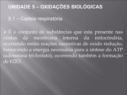 UNIDADE 5 – OXIDAÇÕES BIOLÓGICAS 5.1 – Cadeia respiratória