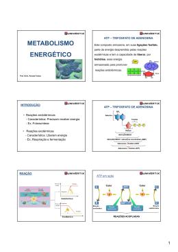 AULA 7 - METABOLISMO - ENERGÉTICO