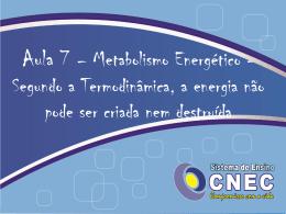 Segundo a Termodinâmica, a energia não pode ser criada nem