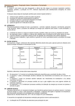 Metabolismo Energético / Respiração Celular, Fotossíntese e