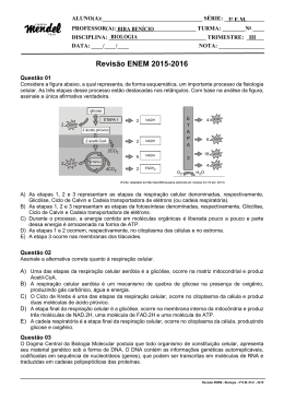 Revisão ENEM 2015-2016