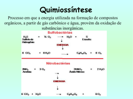 Quimiossíntese - biologiaongep